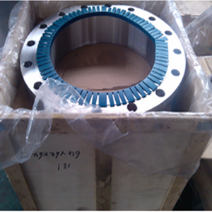 A182 SS Welded Neck Flange, RF, PN20, DN600