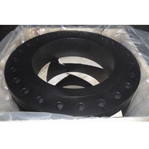 ANSI Forged Welding Neck Flange, SCH STD
